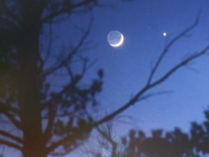 bulan dan venus